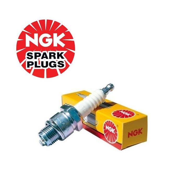 3623 8 x NGK Bougie BPR6EFS